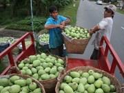 Bond des exportations nationales de fruits et légumes