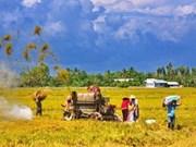 La R. de Corée aide Can Tho dans la mécanisation agricole