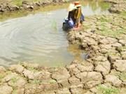 Vietnam et Canada échangent d'expériences sur la résilience aux changements climatiques