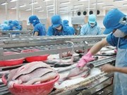 Vietnam-Brésil : nouvelles perspectives d'investissement et de commerce des produits agricoles