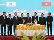 Forum d'affaires Ho Chi Minh-Ville-Daegu (R. de Corée)
