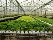 Quang Ninh séduit les projets agricoles