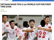 Le Vietnam s'est qualifié pour la Coupe du monde U-20 de la FIFA