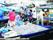 Nghê An: mesures de protection des ressources halieutiques