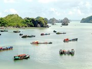 Hai Phong compte devenir un centre touristique de niveau national voire international