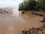 La BM aide un projet d'adaptation aux changements climatiques dans le delta du Mékong