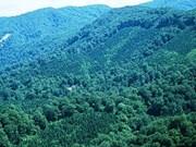 Objectif d'un taux de couverture forestière de 47,25% en 2017