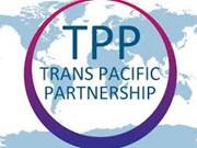 TPP: Singapour, Malaisie et Nouvelle-Zélande poursuivent leur intégration