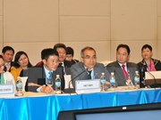 APEC 2017 : le groupe d'experts sur l'exploitation forestière illégale se réunit