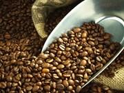Le Brésil importe du café vietnamien pour la première fois de son histoire
