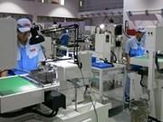 Binh Duong : l'IDE en cinq mois dépasse l'objectif annuel