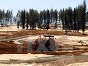 Ninh Thuan restaure les forêts protectrices des bassins versants