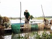 Delta du Mékong: les inondations devraient arriver plus tôt cette année