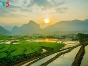 Mu Cang Chai à la saison du repiquage du riz