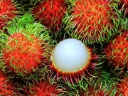 Le ramboutan du Vietnam sera exporté vers la Nouvelle-Zélande