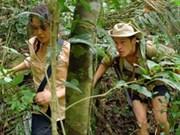 Ciel Rouge, un film français tourné dans les montagnes vietnamiennes