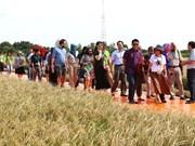 Les délégués apprécient la Semaine de la sécurité alimentaire de l'APEC organisée par le Vietnam