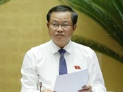 Une délégation de l'AN vietnamienne en visite de travail en Afrique du Sud
