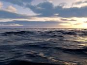 Coordination multilatérale pour la préservation et la valorisation des ressources maritimes