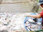 Publication d'une enquête sur la campagne, l'agriculture et l'aquaculture