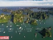Découverte de la baie d'Halong en bateau de croisière