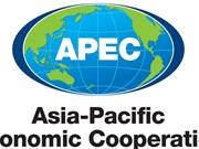 APEC 2017 : un développement inclusif pour que personne ne reste en retrait