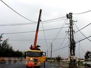 Electricité: le Japon accorde près de 237 milliards de dongs à la province de Phu Yen