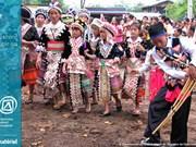 """""""La musique du khène du peuple lao"""" inscrite au patrimoine culturel immatériel de l'humanité"""