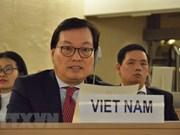 Vietnam: les tensions dans la bande de Gaza doivent être réglées par des mesures pacifiques