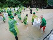 Agir pour une baie de Ha Long verte: vers un tourisme zéro déchet