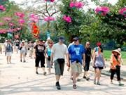 Le Vietnam accueille plus de neuf millions de touristes étrangers en sept mois