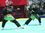 ASIAD 2018 : trois médailles d'argent supplémentaires pour le Vietnam