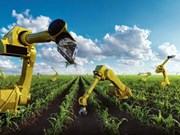 Des sociétés étrangères cherchent des opportunités d'investir dans l'agriculture high-tech