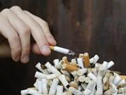 Partage des expériences dans la communication sur la lutte contre les méfaits du tabagisme