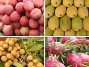Les exportations de fruits et légumes du Vietnam devrait dépasser 4 milliards de dollars
