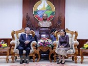 Promotion des relations spéciales Vietnam - Laos