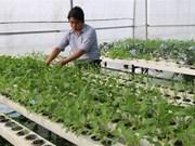 Inde et Vietnam promeuvent le commerce bilatéral