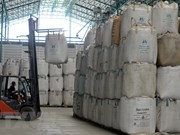 Les exportations thaïlandaises de riz devraient atteindre plus de 11 millions de tonnes cette année