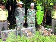 Quang Binh relâche dans la nature 18 animaux sauvages