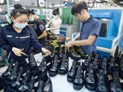 Vietnam – Brésil: le commerce bilatéral prend son envol