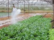 La JICA soutient le Vientam dans l'établissement de la chaine de valeur agricole