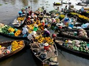 Voyage dans le delta du Mékong avant le Têt du Singe