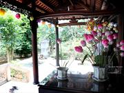 Les fleurs en papier de Thanh Tiên
