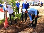 Hanoi lance la Fête de la plantation d'arbres 2016