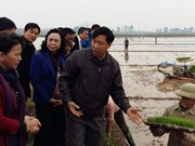 Nguyên Thi Kim Ngân salue le modèle de la Nouvelle ruralité à Hanoi