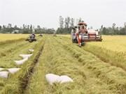Presse argentine : l'agriculture vietnamienne bénéficiera du TPP
