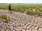 Le Cambodge applique de nombreuses mesures de lutte contre la sécheresse