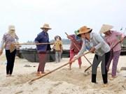 Hécatombe de poissons : un vice-PM se rend à Quang Tri et Quang Binh
