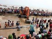 Une baleine de 15 tonnes sauvée à Nghe An