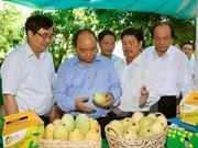 Le Premier ministre en tournée à Dong Thap